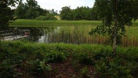 De schitterende mening van het aardlandschap op zonnige de zomerdag Groene bomen en installaties rond meer op blauwe hemelachterg stock video