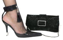 De schoen en de handtas van dames Royalty-vrije Stock Afbeeldingen