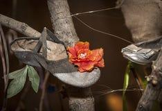 De schoen en de linten van de bloemdans Royalty-vrije Stock Foto