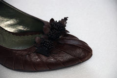 De schoen van de vrouw Stock Fotografie