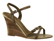 De schoen van de vrouw stock afbeelding