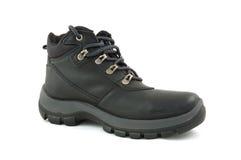 De schoen van de winter stock fotografie