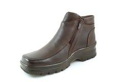 De schoen van de winter royalty-vrije stock foto's
