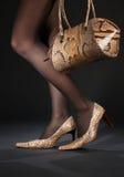 De schoenen en de handtas van Snakeskin Stock Fotografie