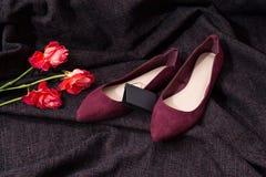 De schoenen van Bourgondië met het etiket op donkere stof, drie rozen modieus concept Royalty-vrije Stock Foto
