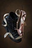 De schoenen van de balletlaars Stock Fotografie