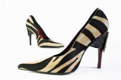 De schoenen van de elegantie Stock Afbeelding