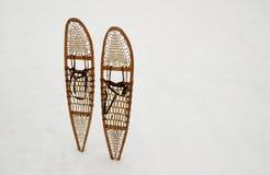 De schoenen van de sneeuw Stock Afbeeldingen