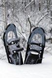 De schoenen van de sneeuw in de sneeuw Stock Afbeeldingen