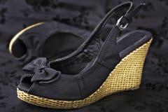 De schoenen van de vrouw âs Stock Afbeeldingen