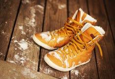 De schoenen van de winter royalty-vrije stock fotografie