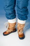 De schoenen van de winter in sneeuw Stock Afbeelding