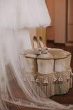 De schoenen van het bruidhuwelijk met hoge hielen en zilveren briljante oorringen op schapen` s kleding Royalty-vrije Stock Foto's