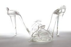 De schoenen van het glas royalty-vrije stock foto