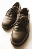De Schoenen van het leer royalty-vrije stock foto