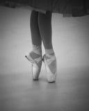 De Schoenen van Pointe Stock Afbeeldingen