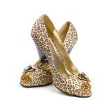 De schoenen van vrouwen. Royalty-vrije Stock Foto