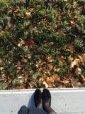 de schoenenmeisje van het de herfstgras Royalty-vrije Stock Foto