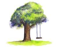 De schommeling van de waterverfboom op witte achtergrond vector illustratie