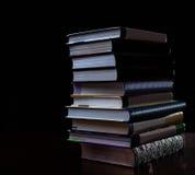 De schoolboeken op bureau, onderwijsconcept, leiden, technologie, kat, plons op Royalty-vrije Stock Afbeeldingen