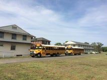 De Schoolbus van de V.S. Stock Foto