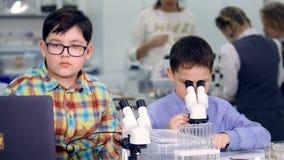 De schooljongens die in het laboratorium bestuderen 4K stock footage