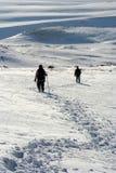 De schoonheid-sneeuw van de winter Stock Afbeelding