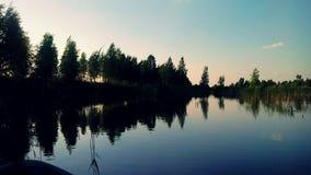 De schoonheid van aard in het moeras Royalty-vrije Stock Foto's