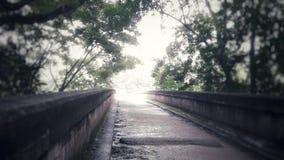 De schoonheid van de Bodhumbarawaterval van Nuweraeliya Sri Lanka stock afbeelding