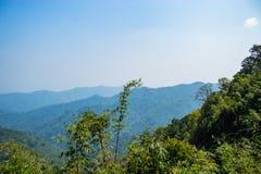 De schoonheid van de bomen en de bergen in Nern Chang Puak stock foto's