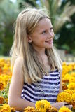 De schoonheid van de bloem Royalty-vrije Stock Fotografie