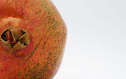 De schoonheid van de granaatappel Stock Afbeeldingen