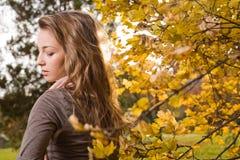 De schoonheid van de herfst Royalty-vrije Stock Fotografie