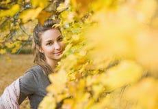 De schoonheid van de herfst Stock Fotografie