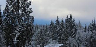 De Schoonheid van de Klassieke Canadese Winter Stock Foto