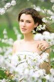 De schoonheid van de lente Royalty-vrije Stock Afbeeldingen