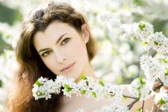 De schoonheid van de lente stock afbeeldingen