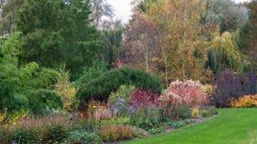 De schoonheid van de tuin Royalty-vrije Stock Foto's