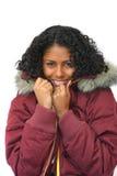 De schoonheid van de winter royalty-vrije stock foto