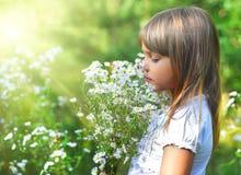 De schoonheid van de zomer royalty-vrije stock fotografie