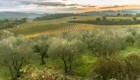 De schoonheid van het Gebied van Toscanië in Italië II stock foto