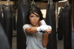 De Schoonheid van Latina het In dozen doen Royalty-vrije Stock Foto