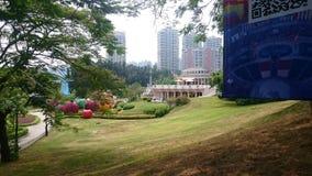De schoonheid van Lotus-park royalty-vrije stock afbeelding