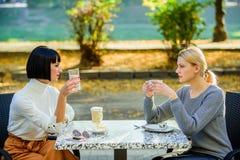 De Schoonheid van de manier bisinesslunch Gelukkige lunch Het genieten van de van Koffie van de Ochtend de gelukkige vriendenmeis royalty-vrije stock afbeeldingen