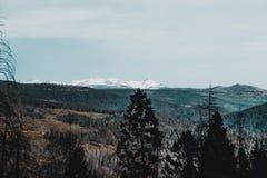 De schoonheid van Meer Tahoe royalty-vrije stock afbeelding