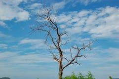 De schoonheid van de wolken en de bomen, de dam van Kaeng Krachan in Petchaburi Stock Fotografie