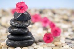 De Schoonheid van Zen Stock Afbeelding