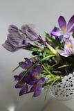 De schoonheidsbloemen Stock Foto