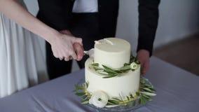 De schoonheidsbruid en de knappe bruidegom snijden een huwelijkscake stock video