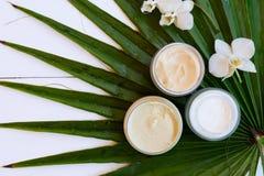 De schoonheidsmiddelen van Nd van de kokosnotenolie royalty-vrije stock afbeeldingen